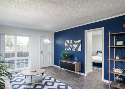 Furnished living room with blue wall and patio door